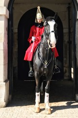 Lifeguard (c11ffb) Tags: westminster london soldier horse england blackhorse horseguardsparade ceremony cavalry tunic
