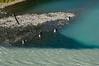 British Columbia Luxury Fishing & Eco Touring 53
