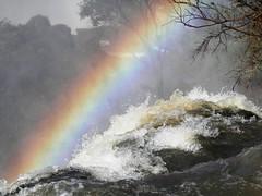 Iguau (magellano) Tags: water argentina rainbow falls acqua arcobaleno iguazu iguau cascate cataratasdeliguaz