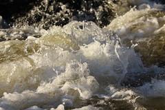 Sven Floda 8 (markus174m) Tags: water splashingwater