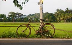 Old bycicles always tell us a story (Fabrizio Diral) Tags: bycicle tellmeastory oldbycicle