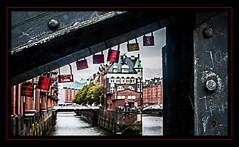 Love in Hamburg - Hamburg in love (madmtbmax) Tags: bridge love germany deutschland 50mm nikon married hamburg locks engaged schloss speicherstadt schlösser verlobt urbanarte d700