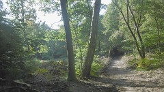 Newly Caved Out Path At Rosendael (Nelis Zevensloot) Tags: rosendael rozendaal