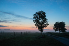 Misty morning (Infomastern) Tags: morning sky cloud mist fog rural sunrise landscape countryside himmel bluehour soluppgng morgon landskap dimma moln geolocation sdersltt landsbygd bltimmen geocity camera:make=canon exif:make=canon geocountry geostate exif:lens=efs18200mmf3556is exif:focallength=24mm exif:aperture=40 exif:isospeed=2500 norraby camera:model=canoneos760d exif:model=canoneos760d