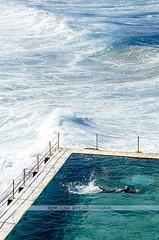 Bondi Icebergs Pool - Australia (Naomi Rahim (thanks for 2 million hits)) Tags: travel 1920s sea man beach water pool bondi architecture swimming swim coast nikon sydney australia pacificocean nsw swimmer artdeco bondibeach bondiicebergs 2015 travelphotography bondibaths nikond7000
