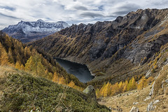 Parco del devero. diga di agaro (AndyPulse1) Tags: world autumn color nature canon landscape flickr paesaggio followme 24105 diga devero amazingcolor agaro