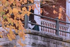 Blue Autumn (Sarah Hina) Tags: blue man sadness alone autumnleaves depression melancholy solitary theridges hunchedover