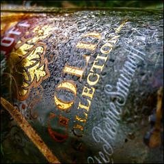 307/365 (chando*) Tags: square bottle dew vodka smirnoff carr bouteille rose goldcollection parcdewoluw