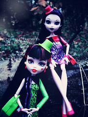 Draculaura & Elissabat (eneida_prince) Tags: photo doll dolls photoshoot photos vampire mh mattel 2015 monsterhigh draculaura elissabat osalina monsterhigh2015 schoolsout frightscameraactionhauntlywood