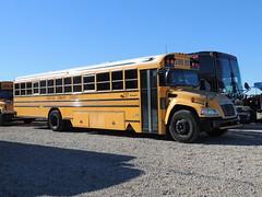 Anderson Community Schools (Nedlit983) Tags: blue school bus bird vision