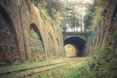 Petite Ceinture : Montsouris (4) (jean-nicolaslehec) Tags: railroad autumn paris fall nature train photography outdoor tracks railway urbex petiteceinture parcmontsouris wondersofnature