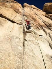IMG_2499 (steph_abegg) Tags: 2016 california notmyphotos steph