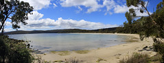 Jetty Beach, Bruny (jpotto) Tags: australia tasmania beach sea scenery panorama islands island bruny brunyisland jettybeach