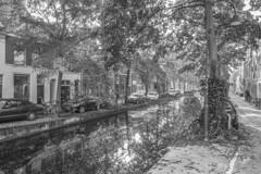 IMG_1125 (digitalarch) Tags: 네덜란드 델프트 nederland delft netherlands