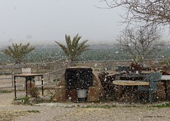 Es schneit in Süd-Spanien* It's snowing in southern Spain * Nieva en el sur de España *   . P1330773-001 (maya.walti HK) Tags: 180117 2017 coposdenieve copyrightbymayawaltihk españa flickr murciaprovinz nevasca nieve panasoniclumixfz200 provinciademurcia provinzmurcia schnee schneeflocken schneegestöber snow snowflakes snowstorm spain spanien