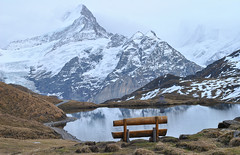 Deep bench (Alpine Light & Structure) Tags: switzerland schweiz suisse alps alpen alpes autumn berneroberland bachalpsee absentsignifier