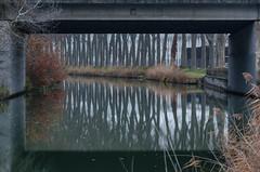 Pont sur le canal.jpg (BoCat31) Tags: cadre reflet pont arbre tronc canal eau