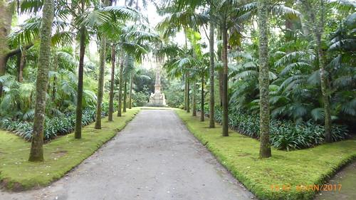 Furnas Terra Nostra park (9)