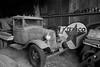 1934 Ford (davekrovetz) Tags: truck antique rural texaco monochrome blackandwhite fuji virginia