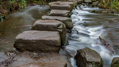 2017-01-17 Rivelin-7396.jpg (Elf Call) Tags: nikon endcliffepark river yorkshire water stream 18105 sheffield steppingstones waterfall d7200 blurred