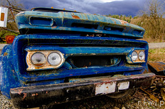 Red Eye (Bob Welch) Tags: old truck blue trashed dump wrecker headlights rusted peeling