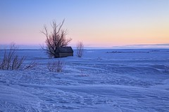 Sunset cold prairie (John Andersen (JPAndersen images)) Tags: alberta blue cold drifts farm granary pink prairie sky snow sunset tree winter