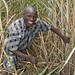 Groundnut farmer