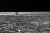 glittering light (Octav Bobe) Tags: light bw water monochrome boat romania ripples danube dunarea reflectionoflight glitteringlight dubova outstandingromanianphotographers