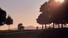 sunset walkers (mimayerle) Tags: trees sunset summer plants silhouette outdoors schweiz evening abend europa sonnenuntergang seasons dusk sommer shapes pointofview bäume draussen aussen abenddämmerung kanton zofingen heiternplatz aargauag