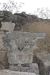 Capitol, Apamea, Syria (susiefleckney) Tags: apamea syria hama ghabplain seleucid roman byzantine arab ruins archaeology ancient capitol westernasia