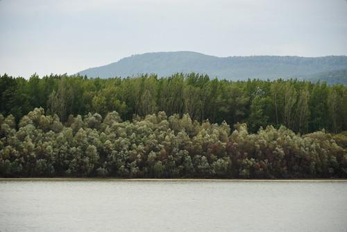 Duna At Verőce