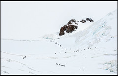 Road to nowhere (Allari) Tags: snow alps ice sport rock traffic crowd rosa glacier climbing busy neve monte alpinismo roccia lys alpi crowded ascent courage ghiaccio ghiacciaio scalata crevasses alpinista cordata mountaneering coraggio crepacci mountaneer