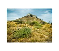 Korthi rocks II (Christos Andronis) Tags: summer green yellow afternoon earth greece strength rough cyclades rockformation καλοκαίρι βουνό rockscapes ελευθερία βράχια korthi εποχέσ ενατένιση îïî¬ïî¹î± îî»îμïî¸îμïî¯î± îïî¿ïîï îî½î±ïîî½î¹ïî· îî¿ïî½ï îî±î»î¿îºî±î¯ïî¹