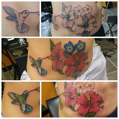 Hummingbird and hibiscus coverup