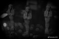 (Landahlauts) Tags: parque museum science andalucia escultura museo egipto andalusia andalusien mummies sciencemuseum ciencia parquedelasciencias momias ciencias andalusie egiptologia andaluzia  andaluzja andaluzio     consorcioparquedelasciencias    parquedelascienciasdeandalucia  andalouzia andalusiya  fujifilmxpro1 fujifilmfujinonxf35mmf14r