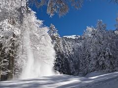 Cascate di neve (Fernando De March) Tags: alberi neve cascate