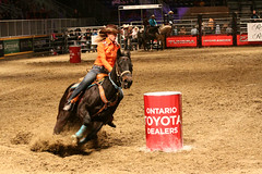 RAWF15 JSteadman 0123 (RoyalPhotographyTeam) Tags: sun royal rodeo 2015 rawf nov08