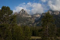 2012_yellowstone_0131 (ronnie.savoie) Tags: mountains wyoming 2012 tetonrange grandtetonnationalpark grandtetonyellowstone tetonparkroad