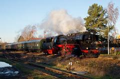BR 50 3648-8 (SofteisBoy) Tags: train dampflok steamlocomotive br50 deutschenbora 5036488