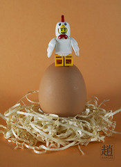 ChickenGuy (mikechiu86) Tags: guy chicken costume lego nest egg mascot suit series minifigure collecitble