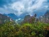 jungle (Marvin Macke) Tags: jungle peru viaje travel trip mountains green beautiful landscape landschaft forest tree latin america