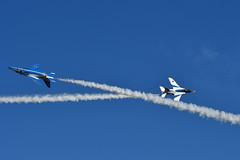 DSC_9053.jpg (kenichi0213) Tags: jasdf 航空自衛隊 自衛隊 航空祭 入間 入間基地 入間航空祭 iruma japan saitama 埼玉 nikon nikkor ブルーインパルス blueimpulse airshow