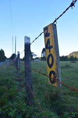 Camino (sebastian3300) Tags: estaca cerca