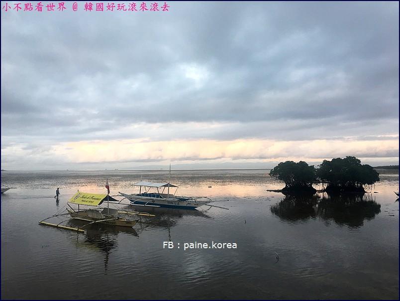 巴里卡薩島Balicasag Island大斷層浮潛 (2).jpg