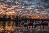 The gathering (James Waghorn) Tags: tree sunset silhouette d7100 swan winter maidstone reflections water boat lake kent motepark clouds sigma1020f456 topazclarity england