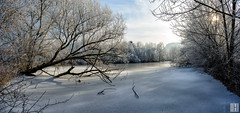 HAPPY NEW YEAR (gregor H) Tags: kommingen vorarlberg österreich at frozen winter hoar pond reed ice landscape panorama shiluette hiver trees fallingdown broken branch silhouette untouched new sun backlit deep shadows lucky moor