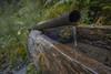 Brunnen (flipypictures) Tags: mariawaldrast serles stubai stubaital wandern wildeben brunnen rost wildleben 16mm f28 slog slog3
