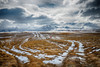 Tracks in the Snow (Little Booby) Tags: canterbury militarycamproad newzealand nzl tekapo