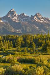 Grand Teton NP, USA (filip.molcan) Tags: nature landscape travel grandteton nationalpark
