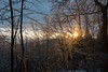 DSC_1067 (K 3 N N Y) Tags: nikon d500 eifel schnee snow hohe acht
